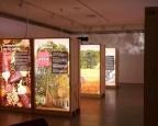 2 Exposicion Itinerante Felix Rodriguez de la Fuente Traveling Exhibition Showcase Backlight Low Budget