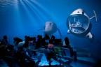 E Proyeccion 360° Inmersion Efecto Inmersivo Idea Expositiva Olaf Noack German Designer Expo Gold Medal Winner