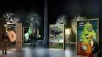 Olaf Noack Escenografo Besucherzentrum Naturpark Scenographer Didactic Spaces Wanderausstellung Itinerary Exhibition